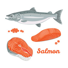 Vector salmon in flat style. Set of illustrations of salmon fish, steak, fillets and red caviar isolated on white background.