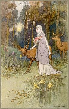 Timid Dun Deer Woman