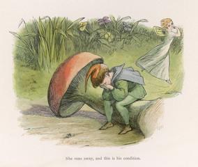 Folklore Fairies Doyle