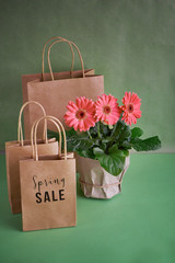 Coral gerbera daisy flowers and craft papper shopping bags on green paper background, Springtime sale concept image with copy-space