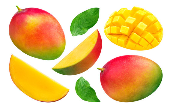 Mango collection isolated on white background