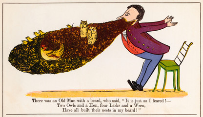 Old Man with a Beard, Edward Lear