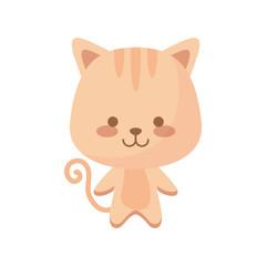 cute cat animal character