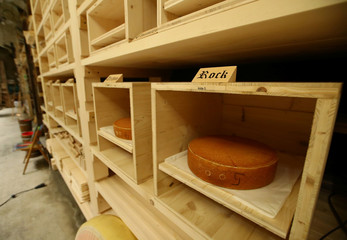 "Maturing wheels of cheese are pictured in the K3 cellar during a media presentation of the experiment to ""insonify"" cheese in Burgdorf"