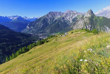 Flowered meadows upstream of the Bertone Hut overlooking Courmayeur. Bertone Hut, Ferret Valley, Courmayeur, Aosta Valley, Italy, Europe