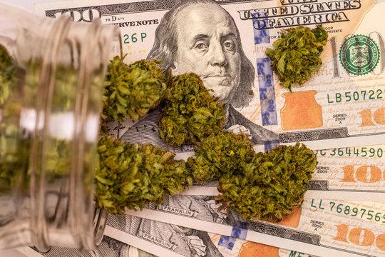 100 Dollar Bill Macro Closeup