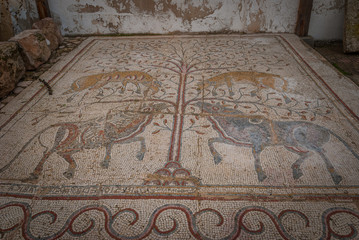 Fotobehang Oude gebouw Roman Mosaic in Madaba archeological museum, Gazelle and oxes, Jordan, Middle East