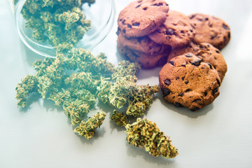 Cookies with cannabis and buds of marijuana on the table. Treatment of medical marijuana for use in food, white background. Cookies with cannabis herb CBD.