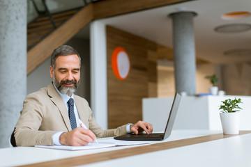 Senior businessman gray hair working on laptop in modern office