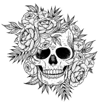 Skull and flowers hand drawn illustration. Tattoo vintage print. Skull sketch.