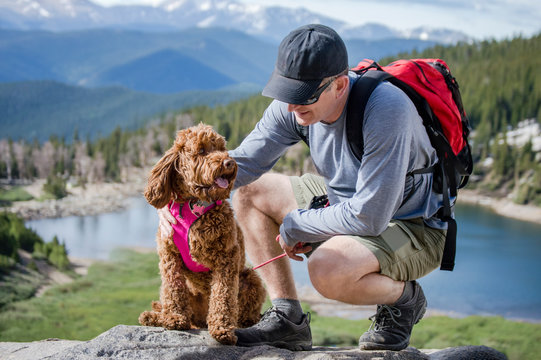 Dog catching breath with man on mountain hike