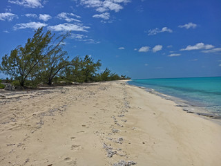 Normans Cay Beach Bahamas