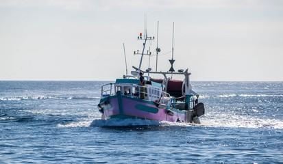 Guilvinec, retour de pêche, Finistère, Bretagne, France.