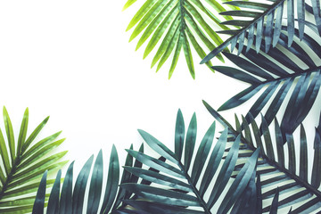 Tropical leaves foliage plant close up with white copy space background.Nature and summer concepts ideas Wall mural