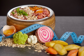 Raw food for dogs diet concept