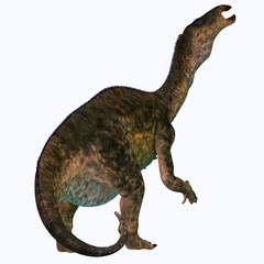Lurdusaurus Dinosaur Tail - Lurdusaurus was an iguanodont ornithopod herbivorous dinosaur that lived in Niger, Africa during the Cretaceous Period.
