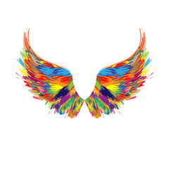 Color wings silhouette