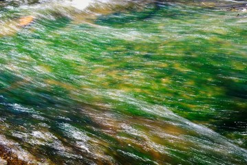 Garden Poster Textures water in the river