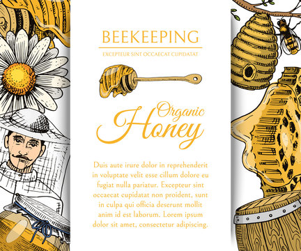 Honey waxing bee and beehive flyer. Poster organic honey and apiary, beehive and chamomile dessert nutrition vector illustration.