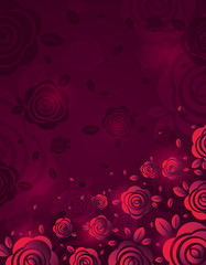 Pink background with fiery rose, vector illustration. Valentines day design with red flowers. Can be used for greetings card, scrap booking, wallpaper, web background, invitation, vector