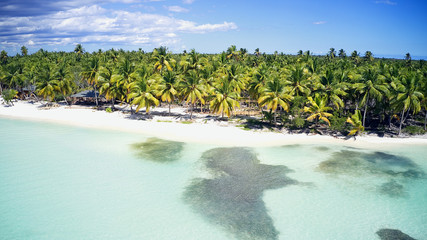 Aerial of a wonderful exotic tropical caribbean beach, Saona, Dominican Republic