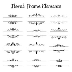 Set of Floral Frame Elements