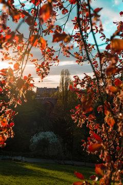 Parc des Buttes-Chaumont in spring