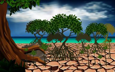 landscape of mangrove forest
