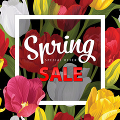Spring sale colorful tulip flowers background. Vector set of blooming floral for holiday invitations, greeting card and fashion design.