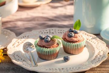 Sweet chocolate muffin in sunny summer garden