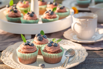 Sweet brown cupcake in sunny summer garden