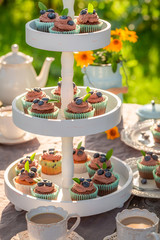 Tasty brown cupcake served with coffee in garden