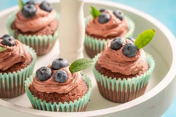 Closeup of cupcake made of chocolate cream and berries