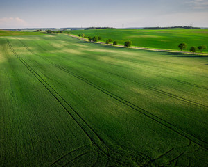 Green rolling farm hills at spring,drone view