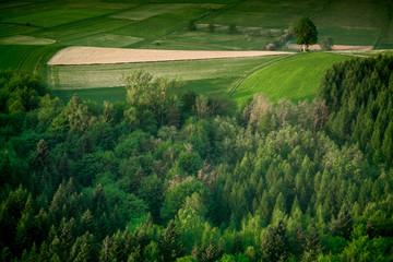 Rural landscape at spring time