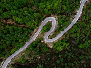 Curvy road in wild forest, aerial view