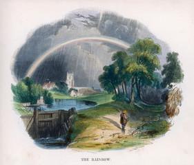 Rainbow J W Whimper