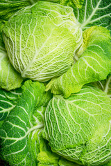 Lots of fresh cabbage.
