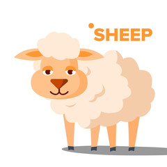 Sheep Vector. Funny Animal Isolated Flat Cartoon Illustration