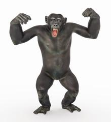 Schimpanse in dominanter Pose