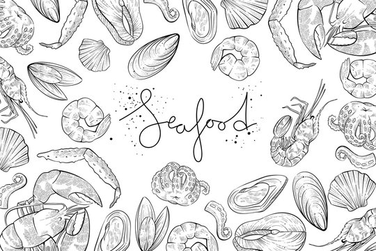 Different seafood products, vector engraving style