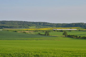 Fototapeta Warmia. Wiosenny krajobraz. Polska obraz