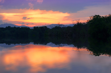 Wall Mural - Colorful twilight sky..Silhouette swamp forest at twilight sky and water reflection..