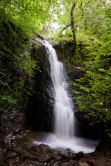 Angel white waterfall in lush and green forest England