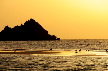 Fotobehang - Sunset on a wild beach on the Indian Ocean. Golden sunset on the paradise island beach.
