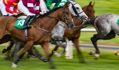Close up motion blur horse racing action