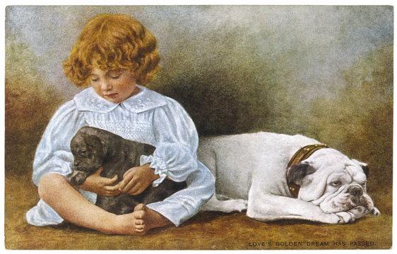 Dog Pup Child