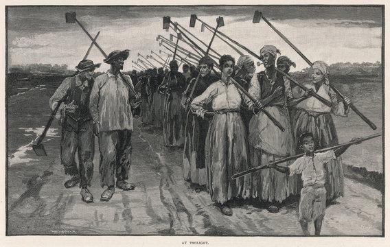 Louisiana Sugar Workers
