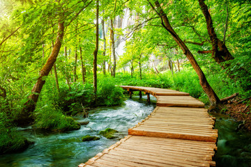 Beautiful wooden path trail for nature trekking with lakes and waterfall landscape in Plitvice Lakes National Park, UNESCO natural world heritage and famous travel destination of Croatia. Fototapete