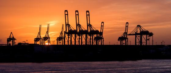 Panorama Hafenkräne Silhouette vor Abendrot in Hamburg